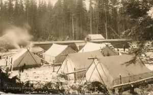 Logging Camp in Swan Valley